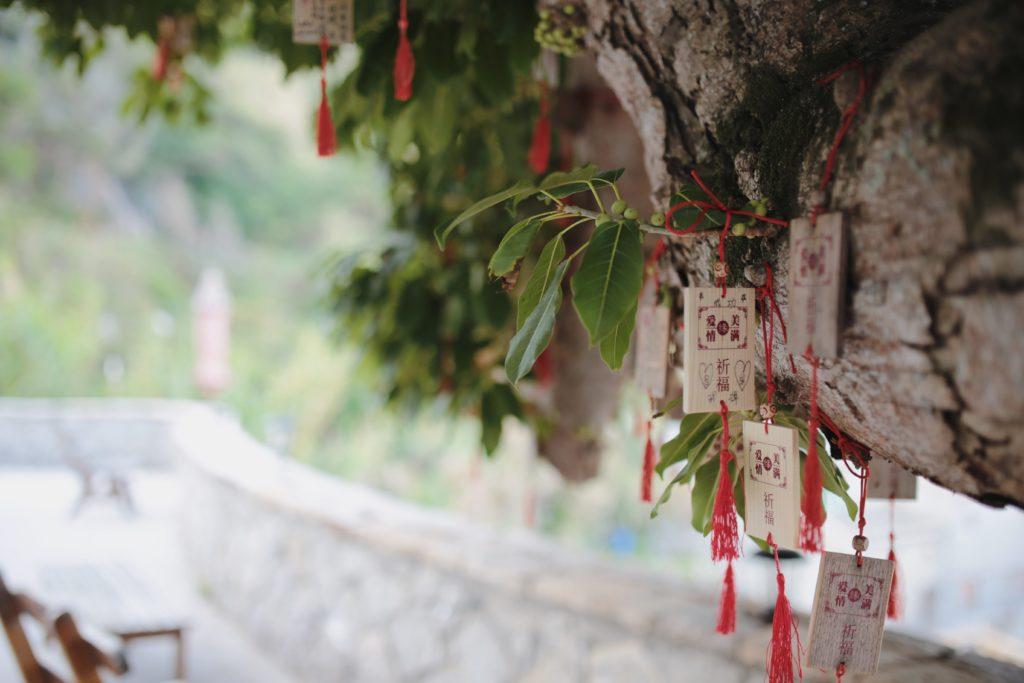 芹壁榕樹下背包客棧百年榕樹