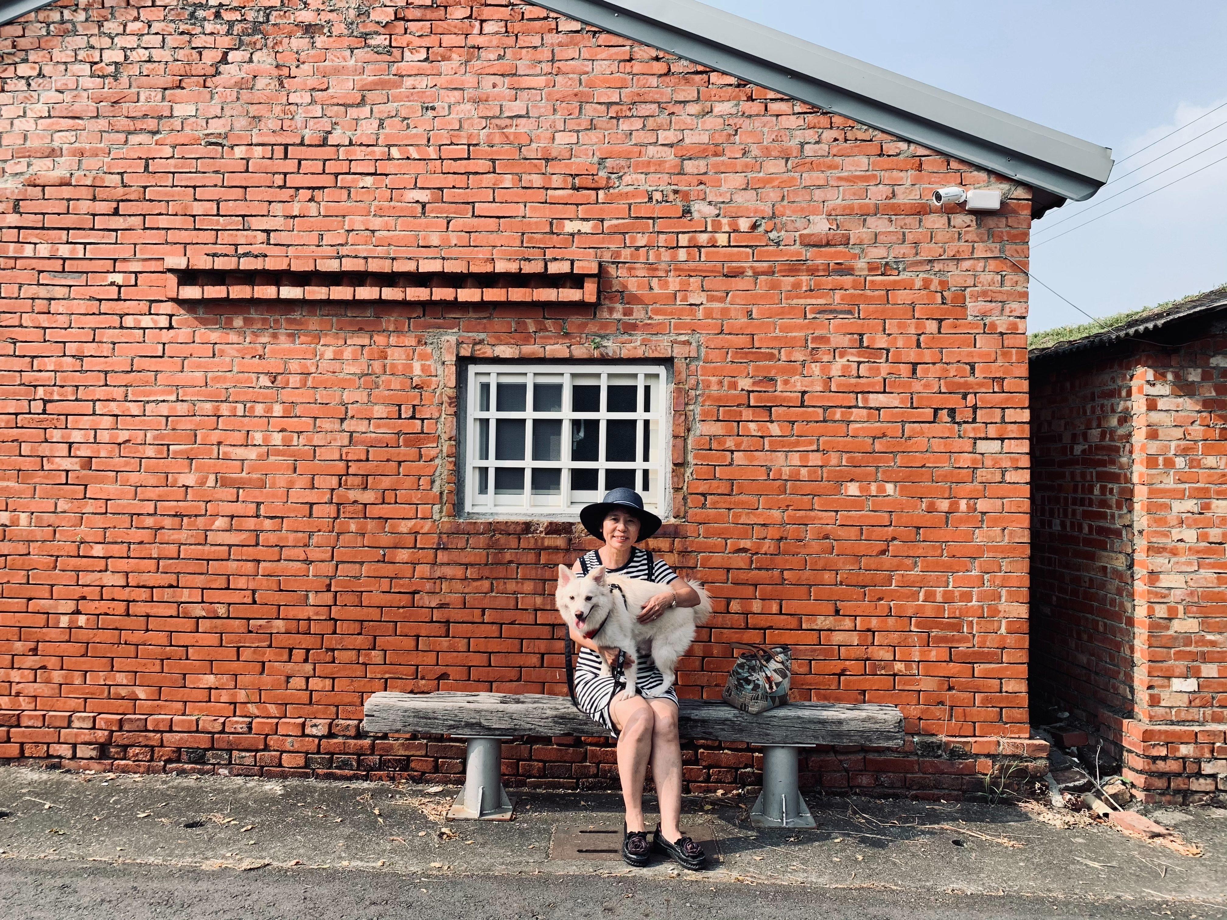台南後壁菁寮老街-後壁景點-白河一日遊-萬里長城順遊景點-菁寮老街-俗女養成記-俗女養成記拍攝景點